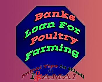Poultry Farming Loan in Hindi. मुर्गी पालन के लिए बैंक ऋण।