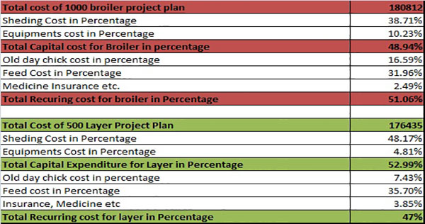 Poultry farming project cost plan-in-Percentage