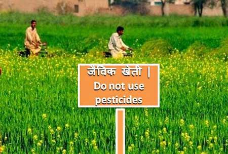 Organic Farming in Hindi- जैविक खेती की महत्वपूर्ण जानकारी।