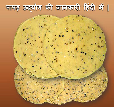 पापड़ उद्योग कैसे शुरू करें? Papad Udyog Business in Hindi.