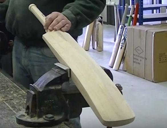 Cricket Bat Manufacturing Business Ki Jankari