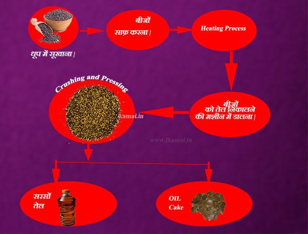 Mustard Oil Extraction Business. सरसों से तेल निकालने का व्यापार।