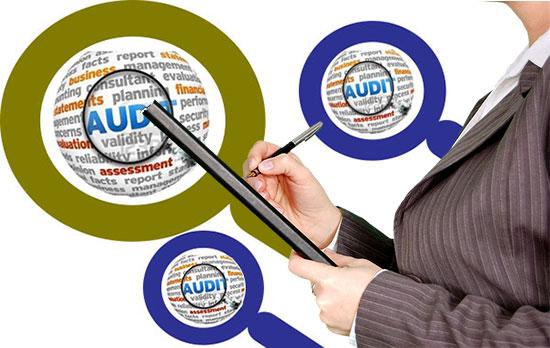 ऑडिट फर्म बिजनेस कैसे शुरू करें. Auditing Firm Business Info in Hindi.