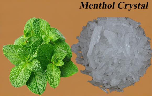 Menthol Crystal Making Business की जानकारी.