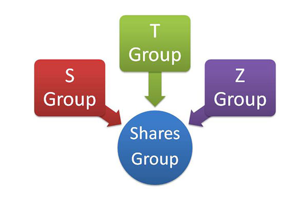 शेयरों की श्रेणी Category of Shares in Hindi