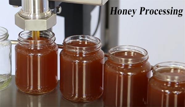 Honey Processing Business शहद प्रसंस्करण व्यवसाय कैसे शुरू करें |