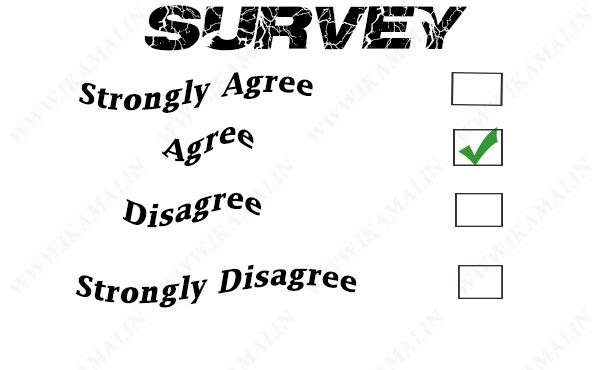 सर्वे बिजनेस कैसे शुरू करें? How to Start a Survey Business in India.