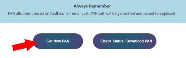 Step 2 to get pan on free online