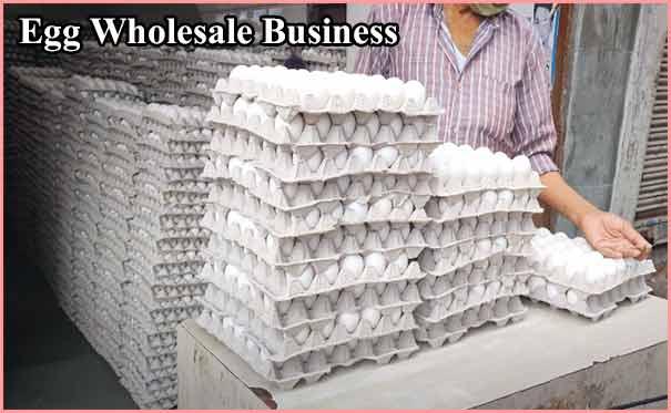 अण्डों का थोक व्यापार कैसे शुरू करें? Egg Wholesale Business in India.