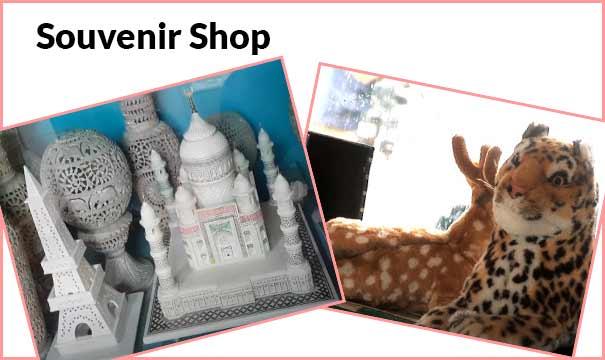 यादगार वस्तुओं की दुकान का व्यापार. How to Start a Souvenir Shop Business.