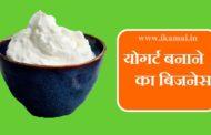योगर्ट विनिर्माण कैसे शुरू करें। Yogurt Manufacturing Business in India.